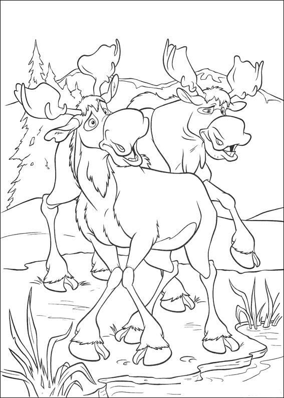 Brother Bear Coloring Picture 9