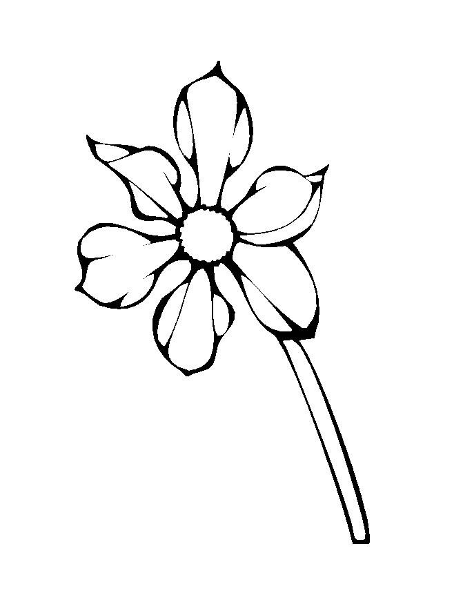 Flower Coloring Picture 11
