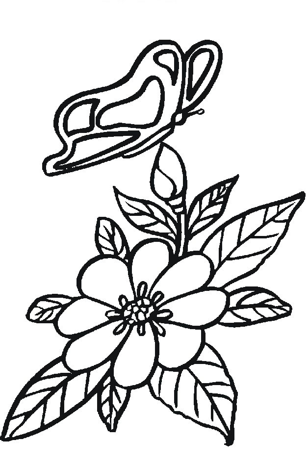 Flower Coloring Picture 7